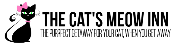 Cat's Meow In